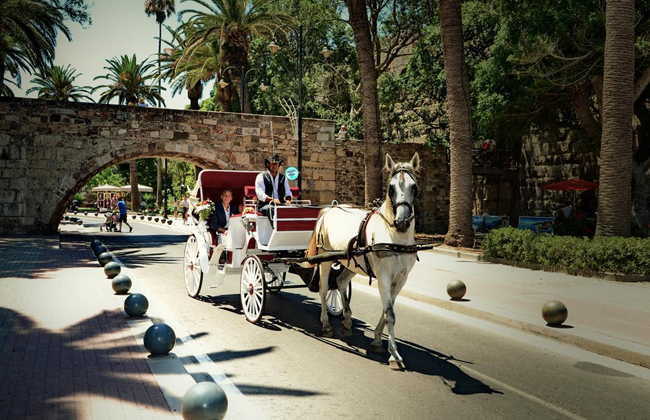 kos-wedding-art-01.jpg