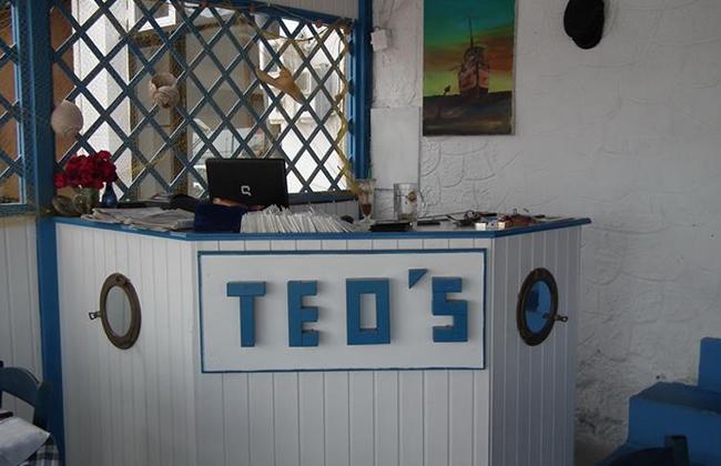 teos-04.jpg