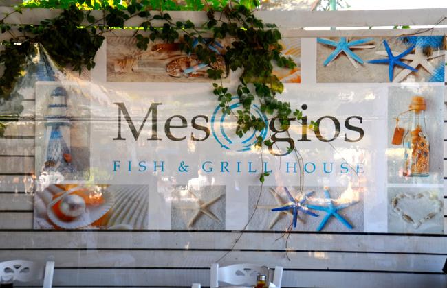 mesogios-002.jpg